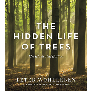 Book cover of The Hidden Life of Trees illustrated edition by Peter Wohlleben