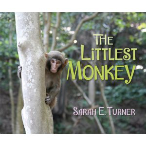 Book cover of The Littlest Monkey by Sarah E. Turner