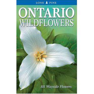Book cover of Ontario Wildflowers by Linda Kershaw