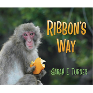 Book cover of Ribbon's Way by Sarah E. Turner