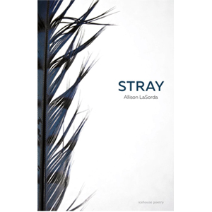 Book cover of Stray by Alison LaSorda