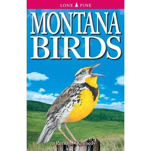 Book cover of Montana Birds by Putnam and Kennedy