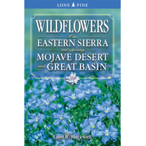 Book cover of Wildflowers of the Eastern Sierra and Adjoining Mojave Desert and Great Basin by Laird Blackwell