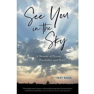 Book cover of See You in the Sky by Jeri Ross